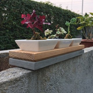 Greenology ceramic flower with cement + wood double base