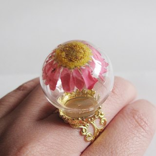 Withhold you / u} {dried flower daisy dream glass ball ring