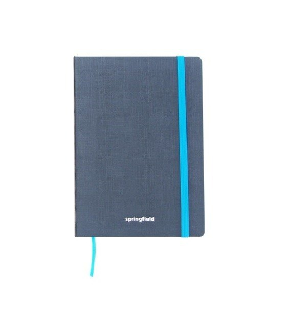 BizNote Notebook (blue)