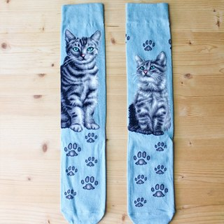 JHJ Design Canada brand series of high-saturation knitting socks cat American Shorthair (Female) cute kitty cat