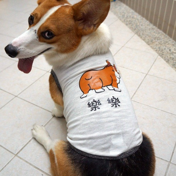 毛孩姓名訂做款 柯基 Corgi 反光衣 寵物背心 棉質背心