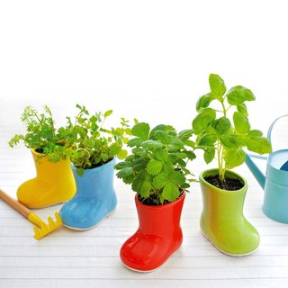 Sheng Tao Tao Yun Baby Boots rain boots potted plants
