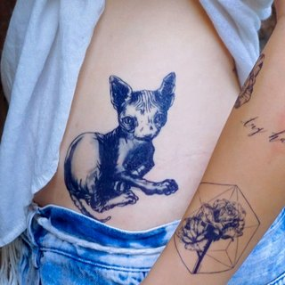 Egypt Hairless Sphynx Cat Blue Kitten Meow Drawing Art Temporary Tattoo Stickers