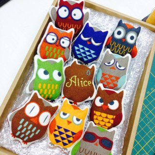 Owl pin group - a group of 11 - including a name can be embroidered yo ~ :)