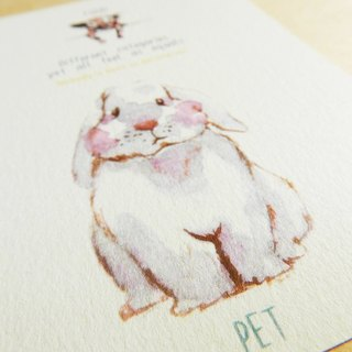 Hand-painted animal postcard - rabbit and cow