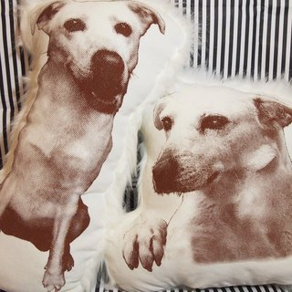 Whatiif ... custom made pet class (small) handmade silk prints pillow