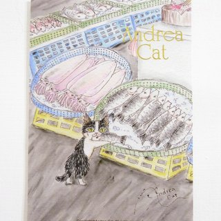 Andrea Cat- Wealthy Street cat kitten postcard - Bruce and Fish Market