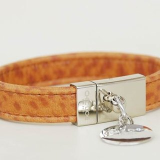 [Leather rope] leopard-print mad leather leather collar ((send lettering))