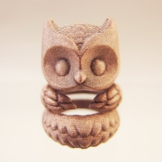Three-dimensional printing ~ owl ring