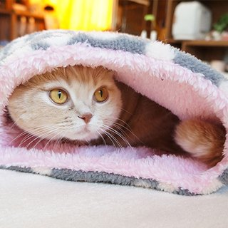 Pet super warm sleeping bag - use both sides of fluffy X X X Free Unplugged warm super good housing
