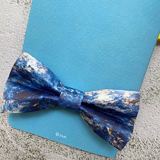 Style 0181 Bowtie - Modern Boys Bowtie, Toddler Bowtie Toddler Bow tie, Groomsmen bow tie, Pre Tied and Adjustable Novioshk