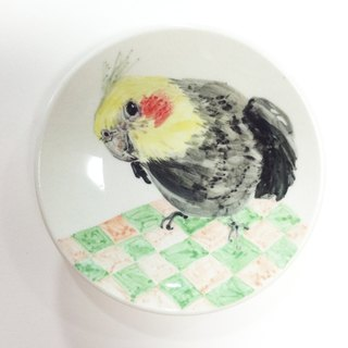 Families with cockatiels - parrots painted saucer