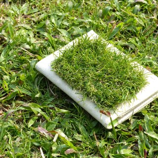 GRASSY Passport Cover