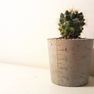 Potted cups cement (excluding plants)