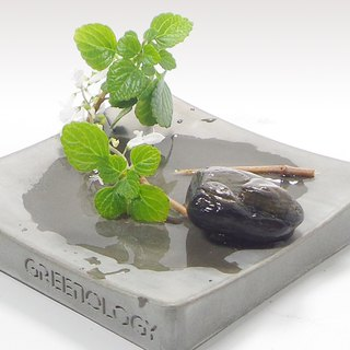 Greenology Cement Dish