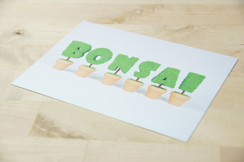 [BONSAI MAN] BONSAI stick game Postcards