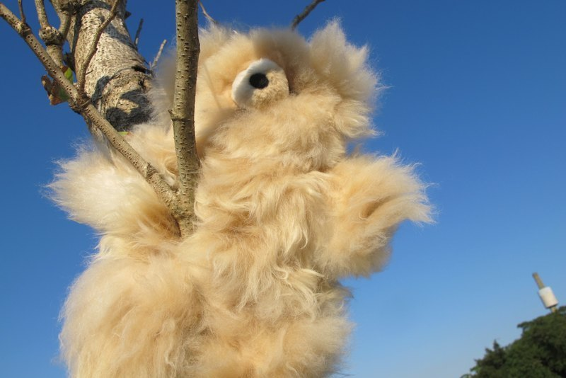 Alpaca 100% wool hand-sewn teddy bear doll