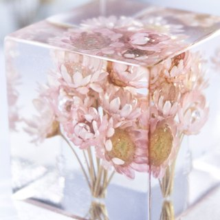 Pink flowers - dried flowers decoration three-dimensional square