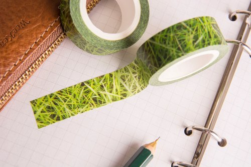 Washi Tapes:Grass(Zoysia japonica)