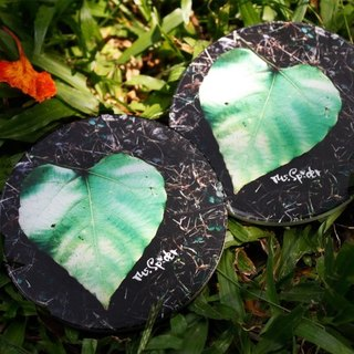 Nature says season. Look ceramic absorbent coasters