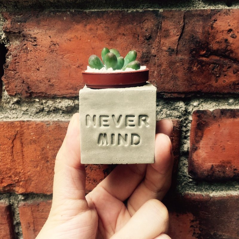 NEVER MIND ~ (does not matter - I did not !!) magnet potted succulents