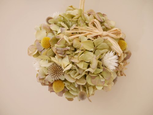 Hydrangea Studio] [Exclusive spring dried hydrangea flower ball