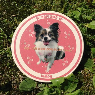 Customized Pet ceramic absorbent coasters