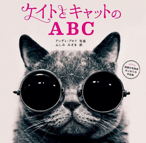DUO book selection - Andy Polk Photo Album: daughter and cat's ABC