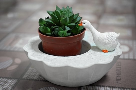 Cement flower. Pots. Pot