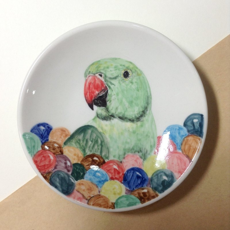 99 in the ball pool play - painted parrots saucer