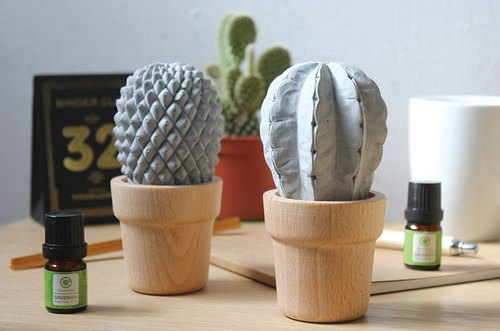 Cement Block cactus Diffuser - Meteor (including fragrance)