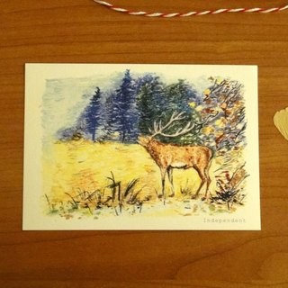 Deer Postcards / Cards