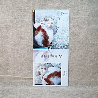 [Postcard] stub - Review - cat slave Recommended section