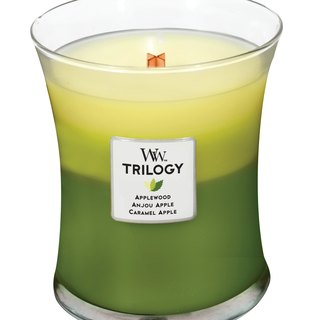 WW 10 oz. Triple Scented Candle - Apple Feast