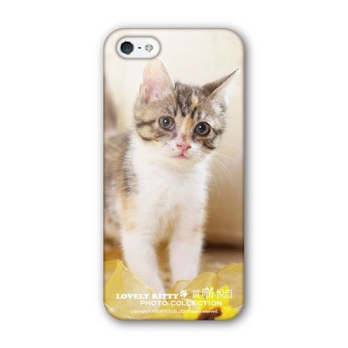 PIXOSTYLE iPhone 5 / 5S Style Case protective shell tide 283