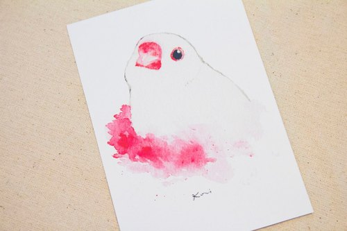 Bai birds hand-painted watercolor style postcards