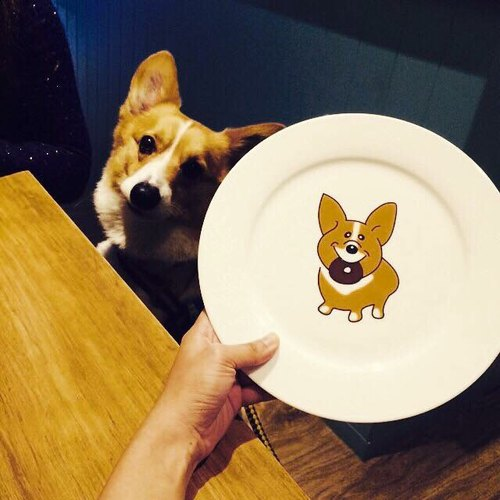 Mr. Butter Cafe Mr. cream exclusive brand custom Corgi Corgi small plates and dessert