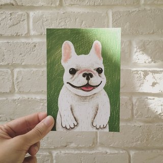 Small Zhuangzhuang law Pitbull Postcards / Kuka