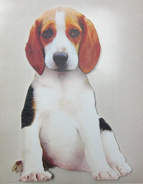 Mark & ​​# 39; s Interior Sticker dimensional decorative wall stickers [Beagle (STK-IN1-K)]
