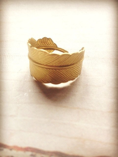 ﹉karbitrary﹉ ▲ feathers (Ku) Contracted personality Ring Ring