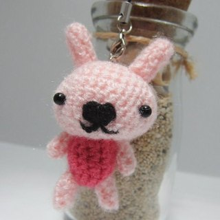 [This] age ❤ ~ cute tabby mini rabbit. Charm
