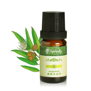 [Herbal True Feelings] Australia Eucalyptus (unilateral essential oil 10ml/30ml/100ml)
