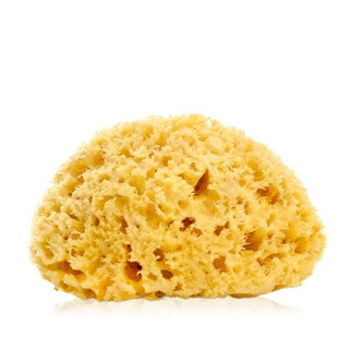 Greens Bath Supplies - 6.5 Natural Hive Sponge - Greek Aegean Sea