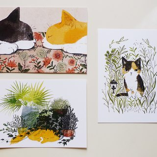 Postcard Pack - Cat with Flowers