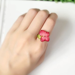 *Haku‧Neko*leafy King - getting red Hydrangea small green ring (real flowers series)