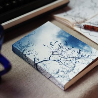 Handmade cyanotype laptop - Winter shadows