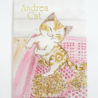 Andrea Cat- Wealthy Street cat kitten postcard - Porphyry and litter box