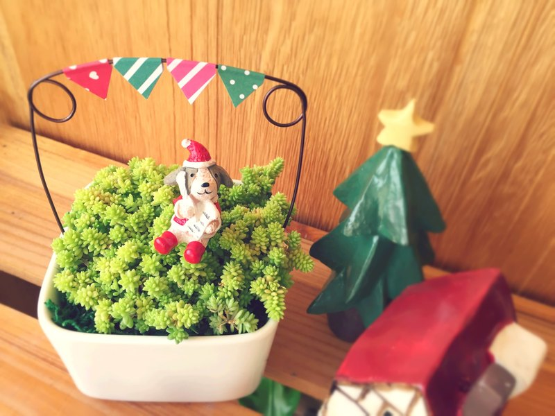 Planting] Christmas dinner tour will be more meat small gifts ...