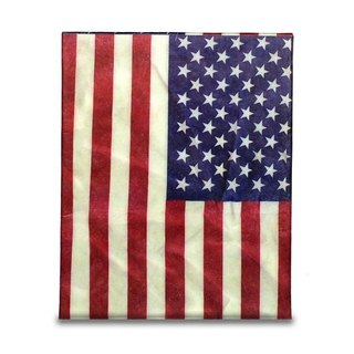 Mighty Case TABLET iPad Case _ Stars and Stripes