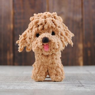 12 ~ 15cm pet avatar (feiwa Fei baby hand made red poodle pet doll (welcome to order your dog)
